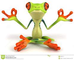 zen frog 3